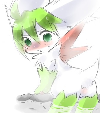 sky shaymin how form to get Bloodstained ritual of the night bunny morphosis