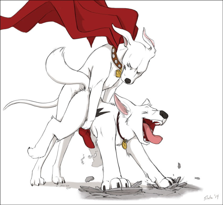 krypto the superdog terrier tail Redead breath of the wild
